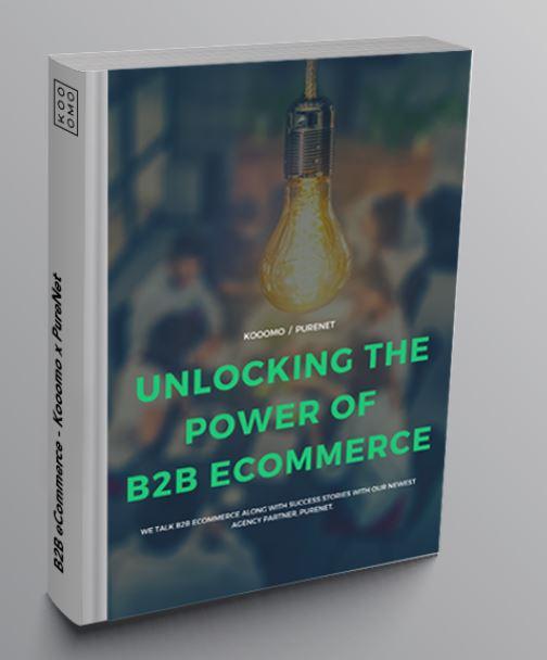 B2B_Ecommerce_White_Paper